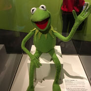 Kermit exhibition