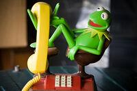 KermitTelephone02
