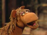 Buster the Horse