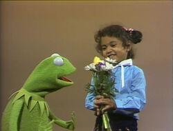 Kermit-Surprises