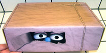 Muppetmailingbox2