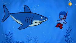 Shark+boy