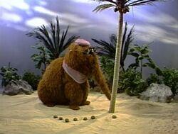 3181-Coconuts
