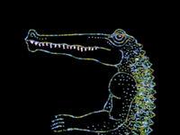 Crocodile2.IshuPatel