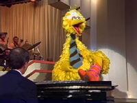 Mike Walsh Show Big Bird 02