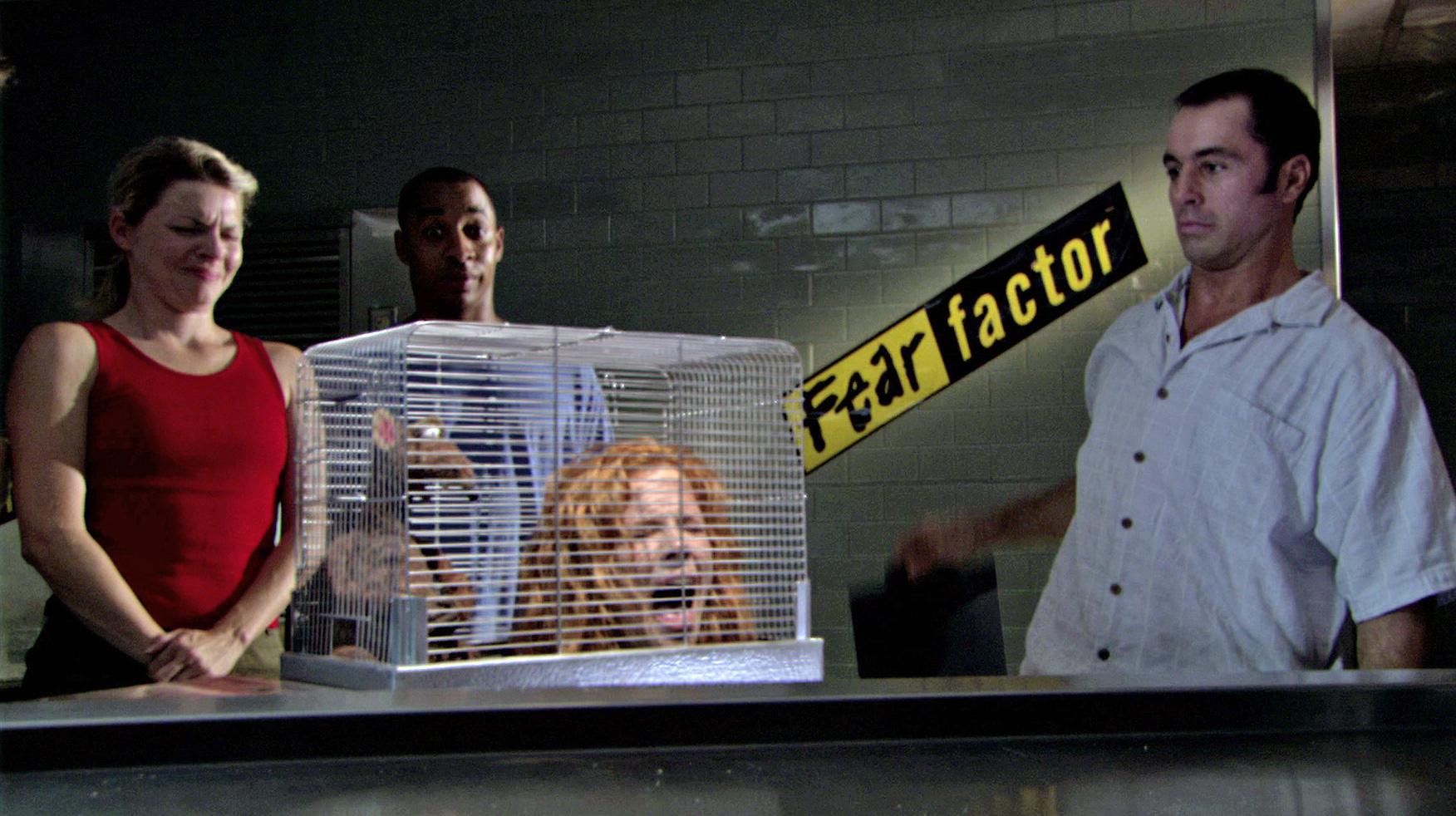 fear factor muppet wiki fandom powered by wikia