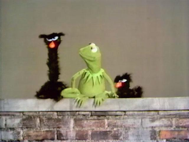 Kermit and Snerfs