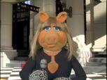 Muppet spotlight 3