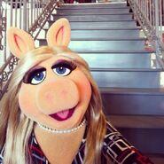 Instagram-MissPiggy-Buzzfeed01-(2014)