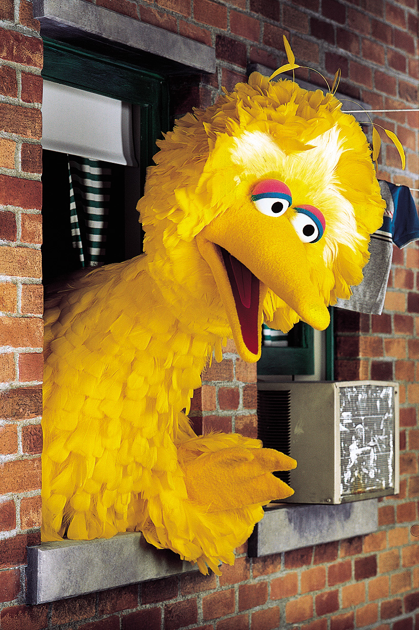 Evil Big Bird Can You Tell Me How to...