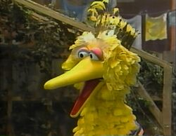 I'm Glad I'm Me - Big Bird