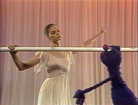 Suzanne Farrell fast slow Grover