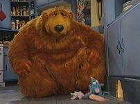 Bear210h