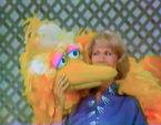 Dinah Shore Big Bird