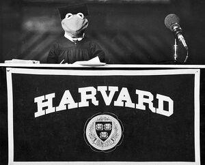 Harvard University Kermit 1982