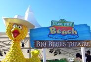 Sesame-street-beach-7