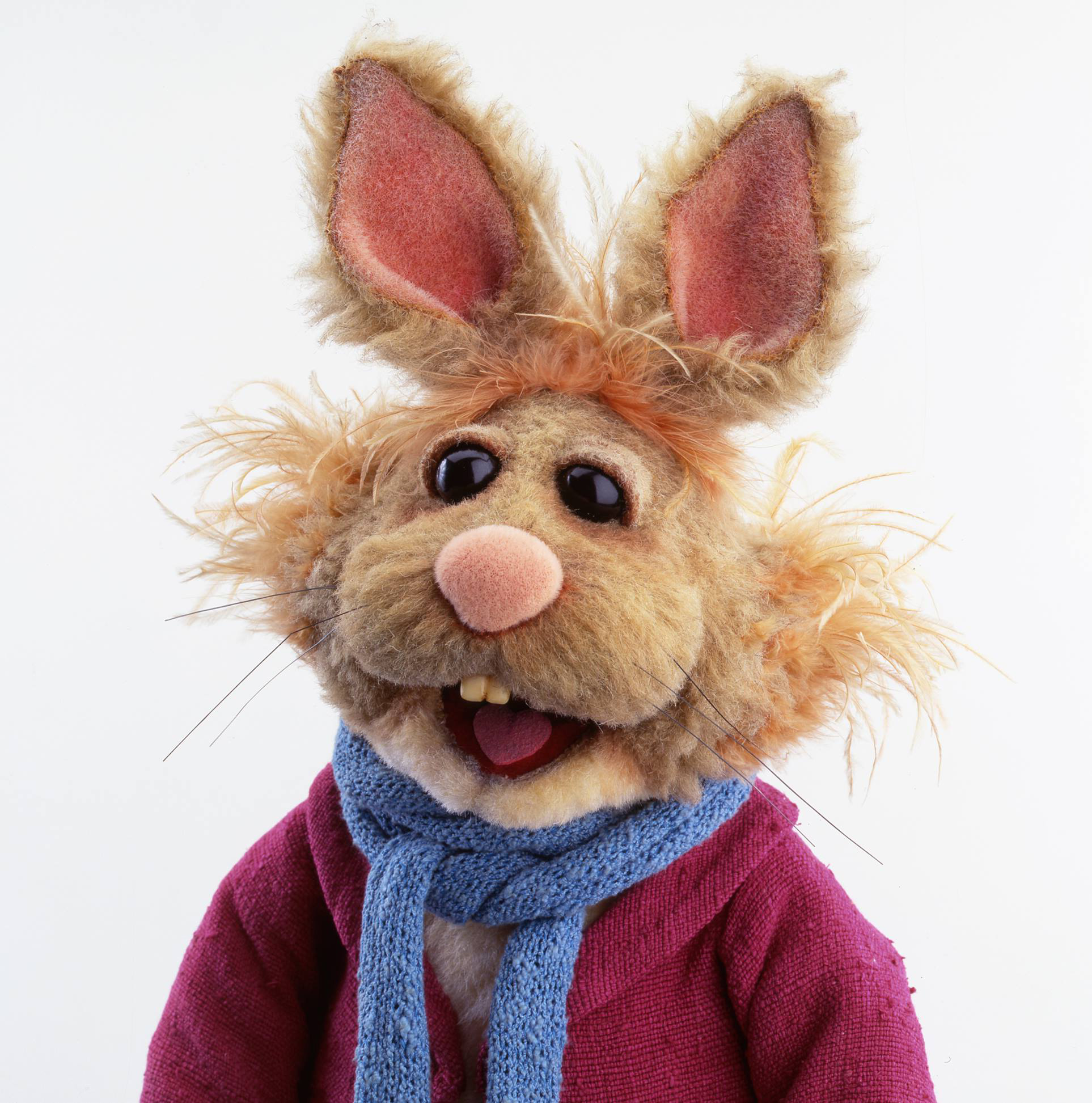 Bean Bunny Muppet Wiki Fandom Powered By Wikia