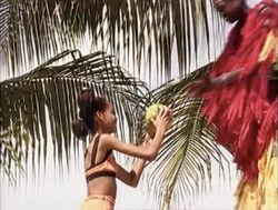 Coconutgather