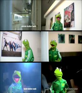 Adidas-Adicolor-Kermit-Ad-3of4-(2005)