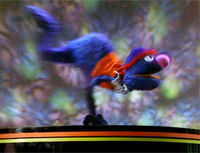 Grover.dancer
