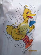 Jc penney bird raincoat 2