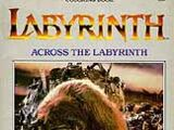 Labyrinth coloring books