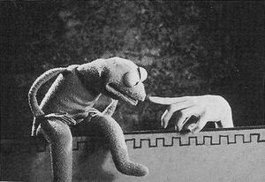 Kermitinchwormjpg