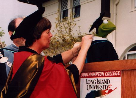 Image result for kermit the frog honorary degree