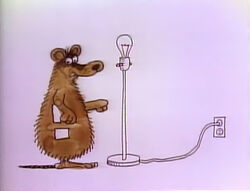 HeSheIt-Bulb