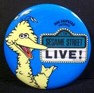 Sesame street live pin 1980