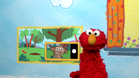 Elmo's World: Photographers