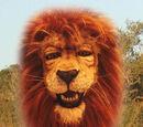 Ponce D. Lion