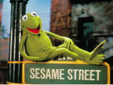 Kermit the Frog on Sesame Street