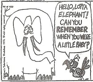 Lottaelephant