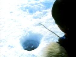 IceFishing.Alaska