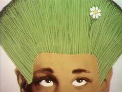 Toon.grasshair.revised