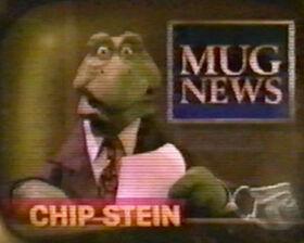 Chipstein