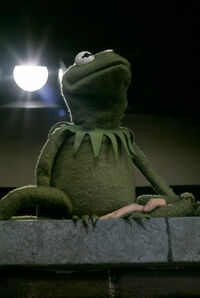Kermit1969BTS