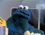 Cookie Monster Through the Years