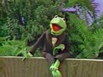 Kermitkeepusbeautiful