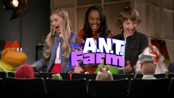 Muppets ANT Farm