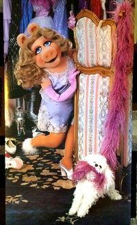 Scandecor 1981 piggy dressing room poster 4