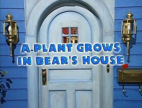 121 A Plant Grows in Bear's House