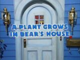Episode 121: A Plant Grows in Bear's House