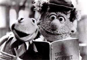 Kermit and fozzie tmm