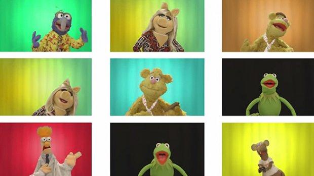 Cool Kids Muppet Wiki Fandom Powered By Wikia