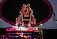 Piggy Thirteenth Doctor