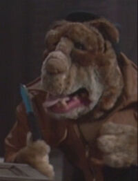 Maddog-puppet