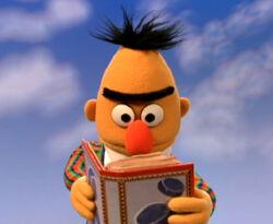 Bert-FunnyBook