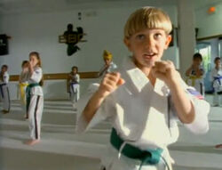 4087 joey karate